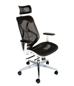 Ergomesh Ergonomic Japanese Mesh Desk / Office Chair
