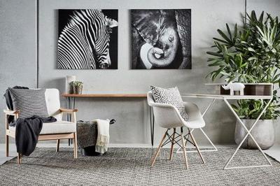 Where to Buy Replica Eames Dining Chairs Online in Melbourne?